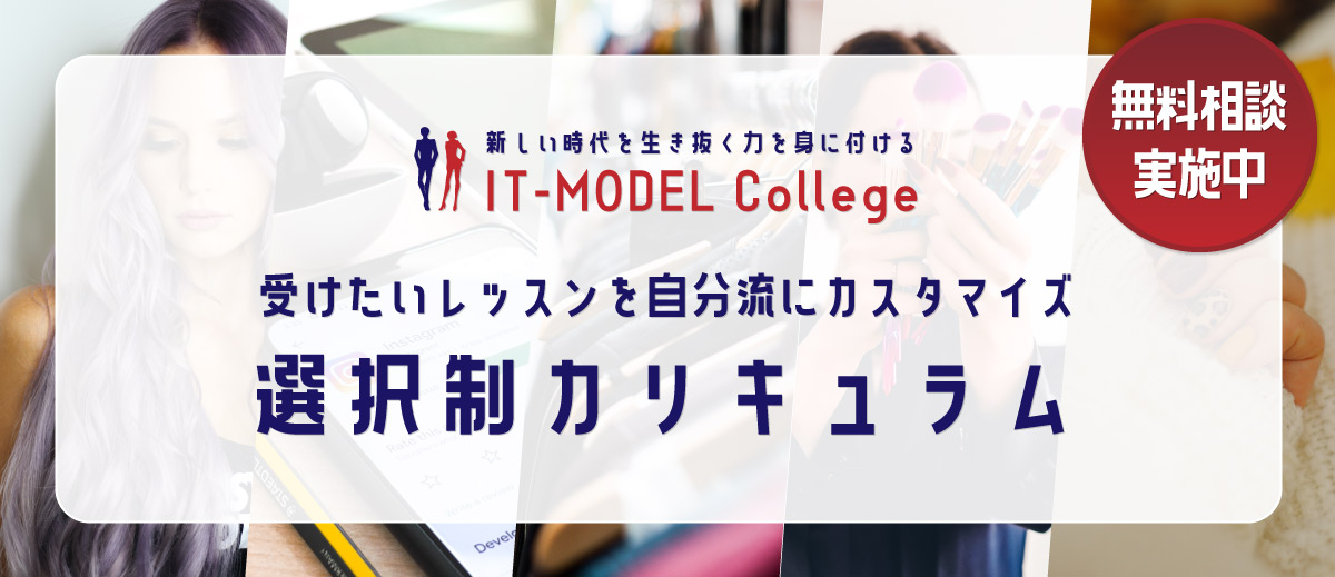 IT-MODEL-College モデル・IT育成レッスン 選択制カリキュラム
